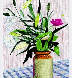 David Hockney – iPad Drawings