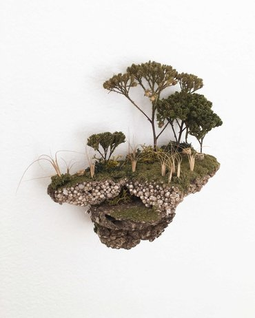 Islands 5