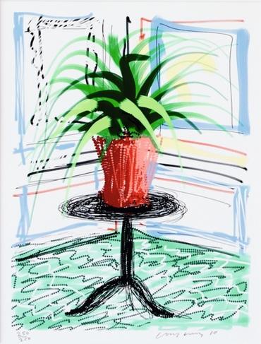 iPad drawing aloe vera