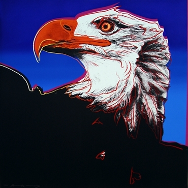 Bald Eagle, from Endangered Species FS II.296