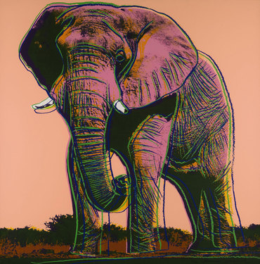 African Elephant, from Endangered Species