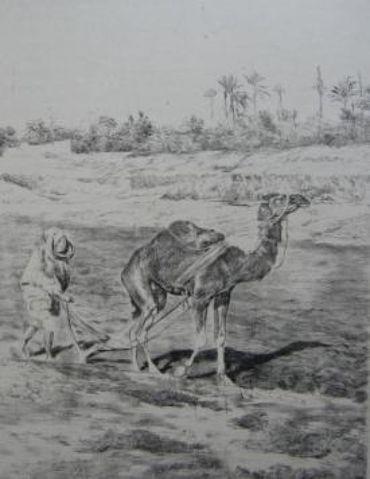 Laboureur Du Kef, 1899