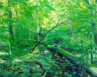 kommst Du mit in den Wald ?