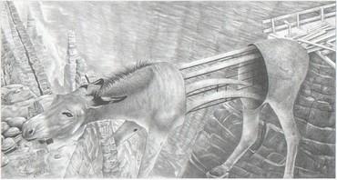 Donkeybridge