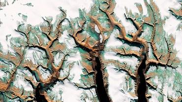 Tree Rivers 1, Canada