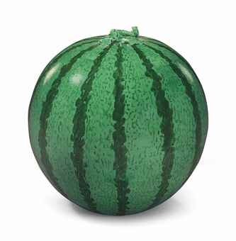 Ai Weiwei-Watermelon-2009