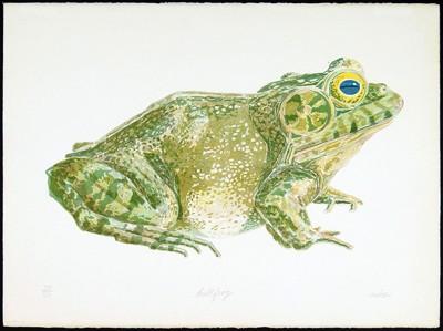 Don Nice-Bullfrog-1972
