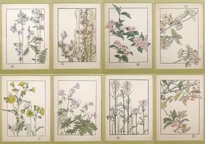 J. Foord-Art Nouveau Flowers-1906