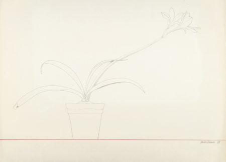 Derrick Greaves-Potted Plant-1968