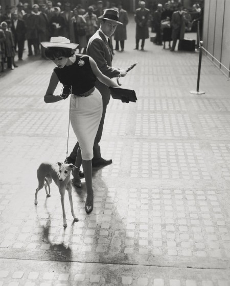 William Helburn-Simone With Whippet (Simone D'Aillencourt And Walter Purdy, Penn Station)-1959