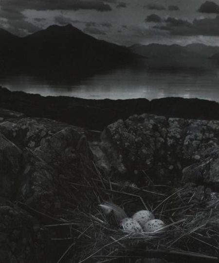 Gull's Nest, Late On Midsummer Night, Isle Of Skye-1947