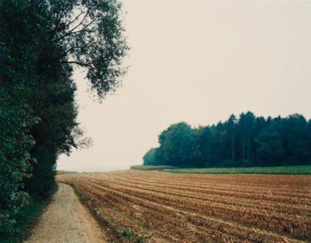 Thomas Struth-Mais-Acker Nach Der Ernte No.34, Winterthur-1993