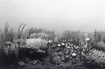 Hiroshi Sugimoto-Cambrian Period-1992