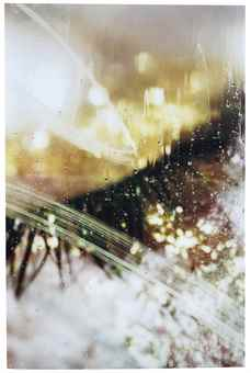 Marilyn Minter-Shimmerous-2012