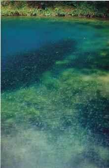 Wolfgang Tillmans-Cova Crater II-2003