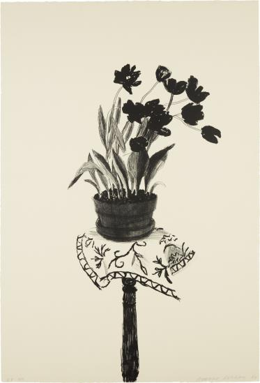 David Hockney-Black Tulips-1980