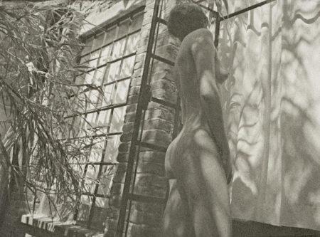 Manuel Alvarez Bravo-La Tela de la Arana-1989
