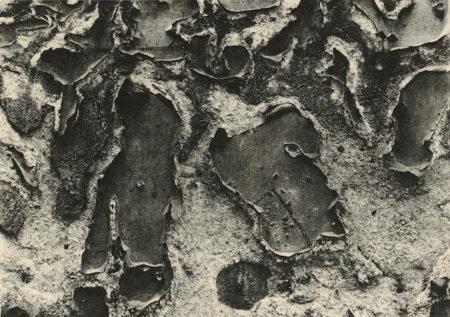 Aaron Siskind-5 Platinum Prints-1951