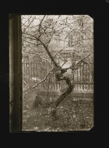 Josef Sudek-Window Of My Studio, Prague-1954