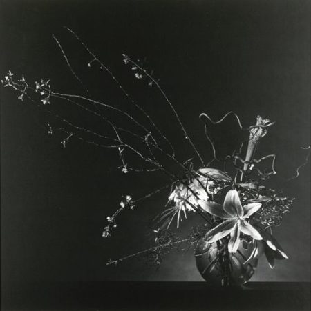 Robert Mapplethorpe-Flower Arrangement-1982