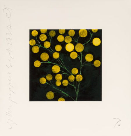 Donald Sultan-Yellow Peppersfrom the Fruits and Flowers III-1993