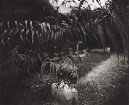 Sally Mann-Arundo Donax-1988