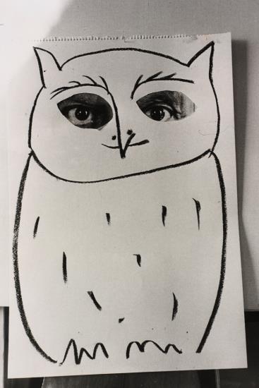 Rene Burri-Portrait Of Picasso As An Owl, Villa La Californie, Cannes-1957