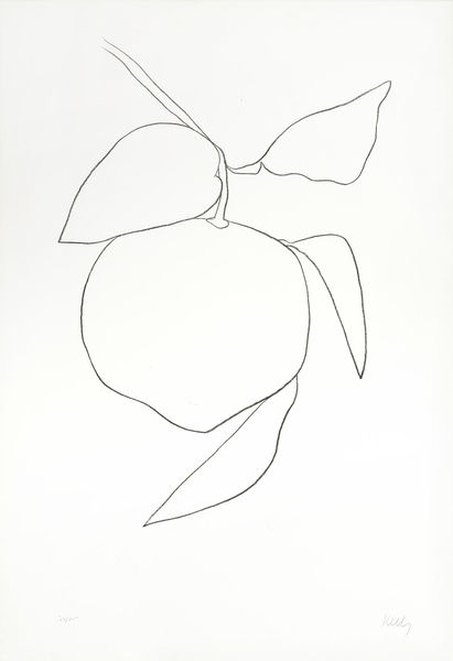 Ellsworth Kelly-Tangerine (Mandarine), from Suite of Plant Lithographs-1965