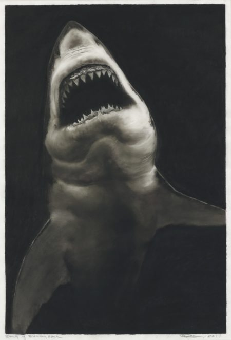 Robert Longo-Study Of Breaching Shark-2011