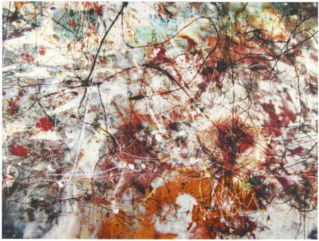 Gerda Steiner & Jorg Lenzlinger-Brainforest Kanazawa-2004