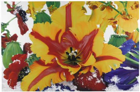 Marc Quinn-The Extra Tropical Troposphere-2006