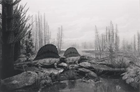 Hiroshi Sugimoto-Permian-Land-1992