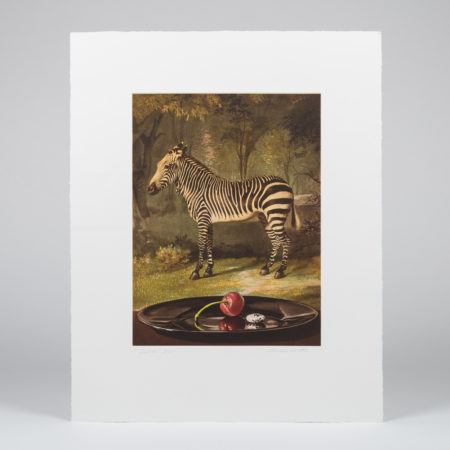 Sherrie Wolf-Zebra-2011