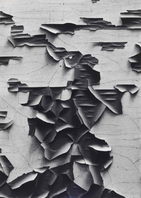 Aaron Siskind-Jerome, Arizona, 21-1949