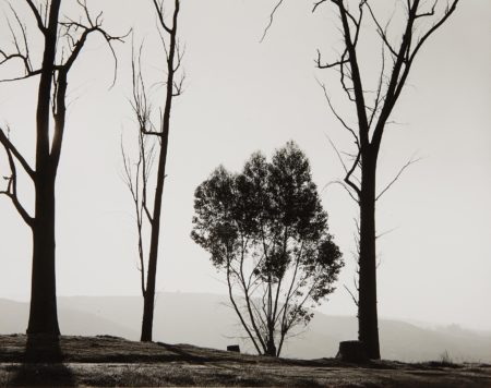 Robert Adams-Edge Of San Timeteo Canyon, Redlands, California-1982