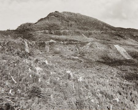 Robert Adams-Clearcut And Burned, East Of Arch Cape, Oregon-1976