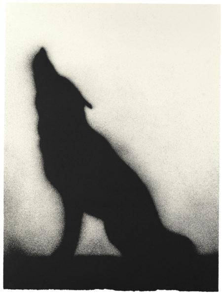 Ed Ruscha-Coyote (E. 169)-1989