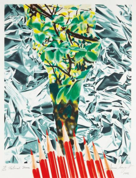 James Rosenquist-Katonah Muse-1993