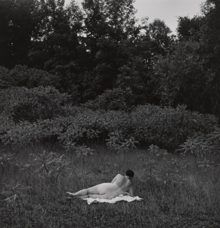 Harry Callahan-Eleanor, Port Huron-1954