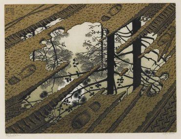 Maurits Cornelis Escher-Puddle (Bool/Kist/Locher/Wierda 378)-1952