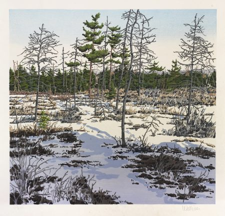 Neil Welliver-Little Marsh-1986