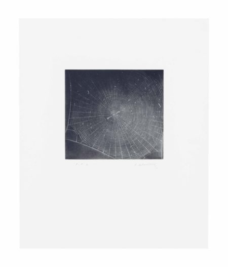 Vija Celmins-Untitled (WEB 2)-2001