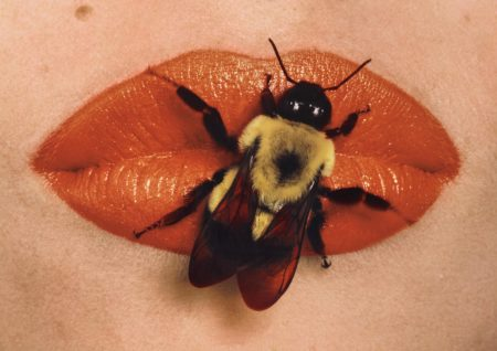 Irving Penn-Bee On Lips, New York-1995