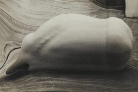 Andre Kertesz-Distortion #143-1933