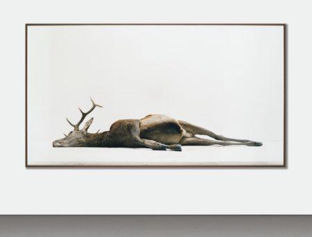 Eric Poitevin-Sans Titre (Cerf Allonge)-2005