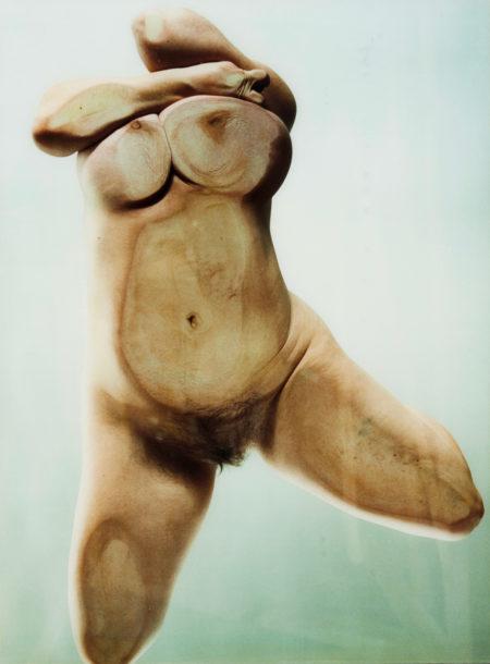 Jenny Saville-Closed Contact #10-1996
