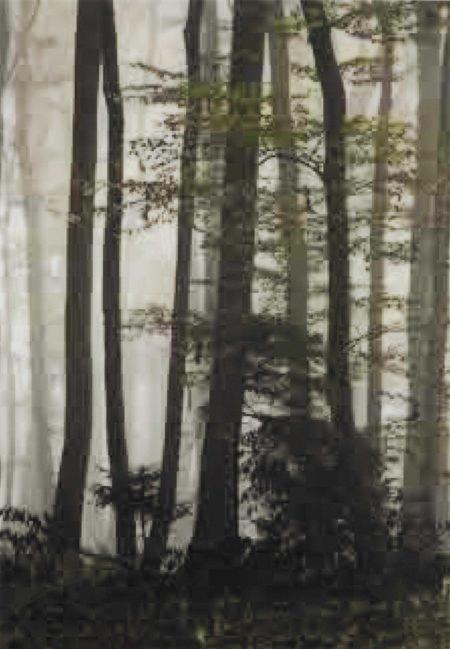 Thomas Ruff-jpeg wd03-2005