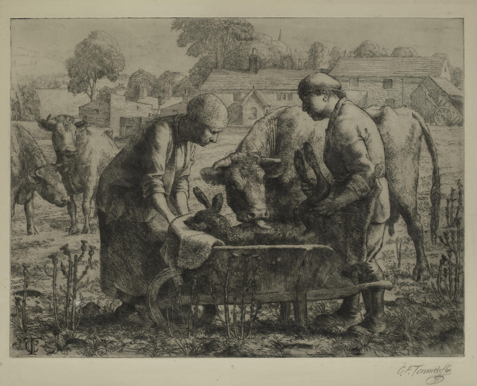 Charles Frederick Tunnicliffe-The Newborn Calf-