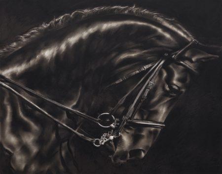 Robert Longo-Study Of Stallion's Arc-2013