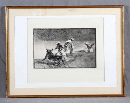 Bullfighting-